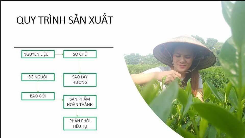 Quy trình sản xuất trà