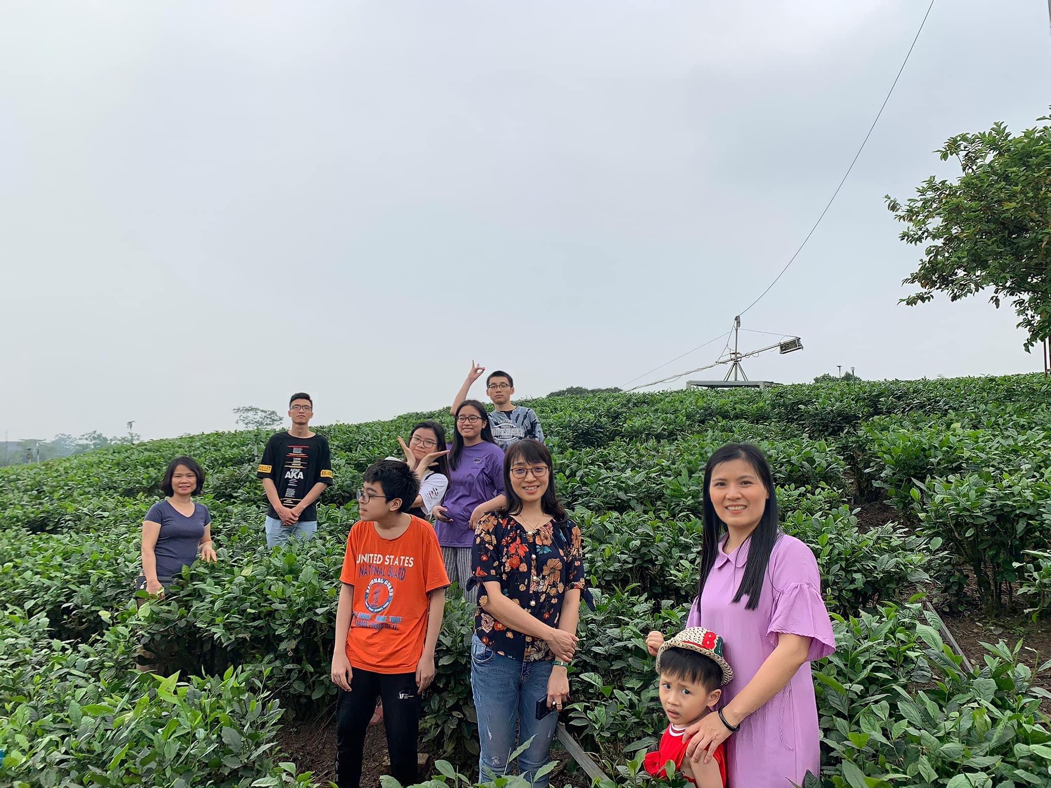 đồi trà Tân Cương Thái Nguyên